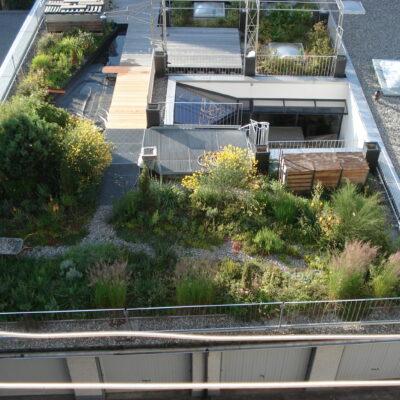 Des toits accueillants pour la nature
