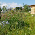 Permaculture: atelier et visite