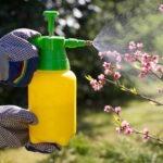 Comment bichonner nos jardins sans pesticides?