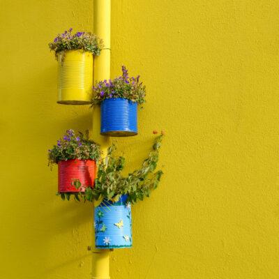 Le renouveau des potagers urbains